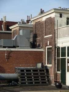 Haarlem_TV sul tetto